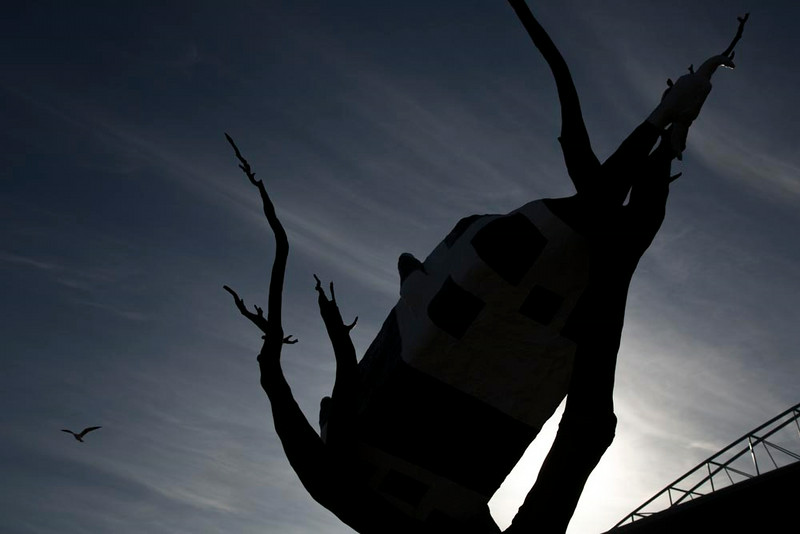 Day 169: Silhouette of a cow in a tree, Docklands