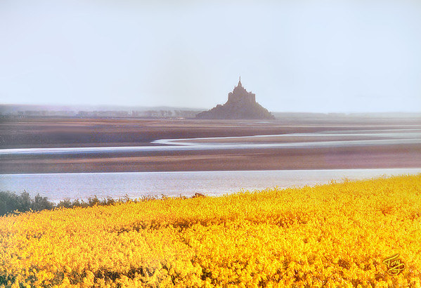 View of le Mont-Saint-Michel from le Grouin du Sud 2002