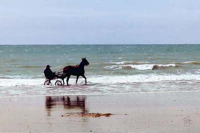 Carolles-Plage 2002 - Harness Racer