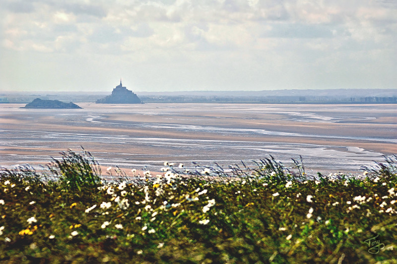 "<html>Champeaux - Route-des-Falaises 2006 - Marguerites Contemplant Tomblaine et le Mont-Saint-Michel <a title=""godaddy counter"" href=""http://statcounter.com/godaddy_website_tonight/"" target=""_blank""><img style=""display:none;"" src=""http://c.statcounter.com/2514080/0/73d54fdc/0/"" alt=""godaddy counter""></a></html>"