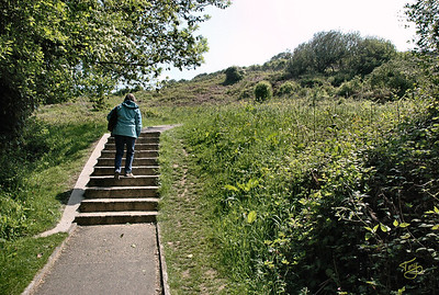 Omaha Beach 2009 - below Normandy American Cemetery in Colleville - heading up the slope the boys faced in 1944 (They didn't have the luxury of a path with steps.)