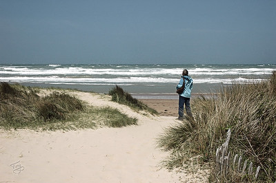 Omaha Beach 2009 - below Normandy American Cemetery in Colleville - 1