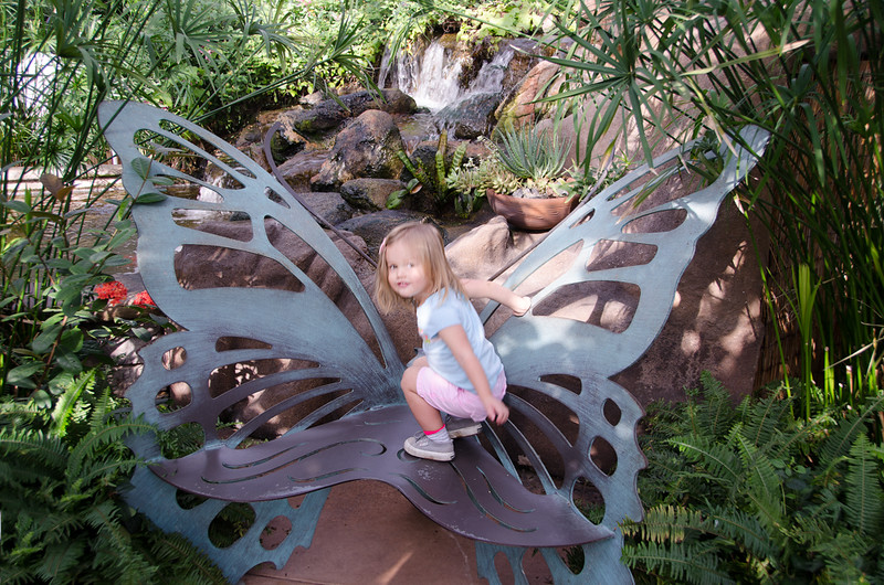 Field trip with Mabel to the Butterfly Museum