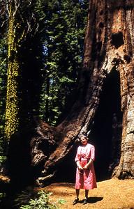 GlacierPt_Yosemite_06-50
