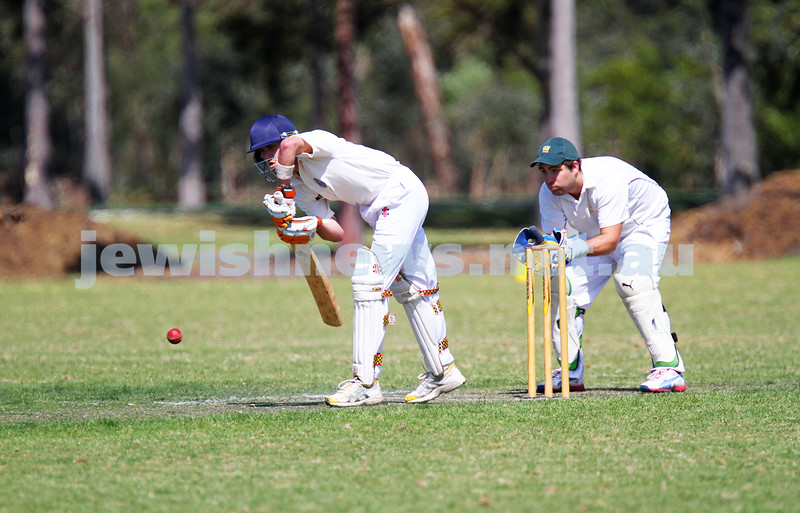 5-10-14. Maccabi AJAX Cricket First XI  5/170 def Power House all out 120 at David Mandie Oval. Mark Shnider 102 not out. Yossi Herbst 5/33. Aaron Fetter batting. Photo: Peter Haskin