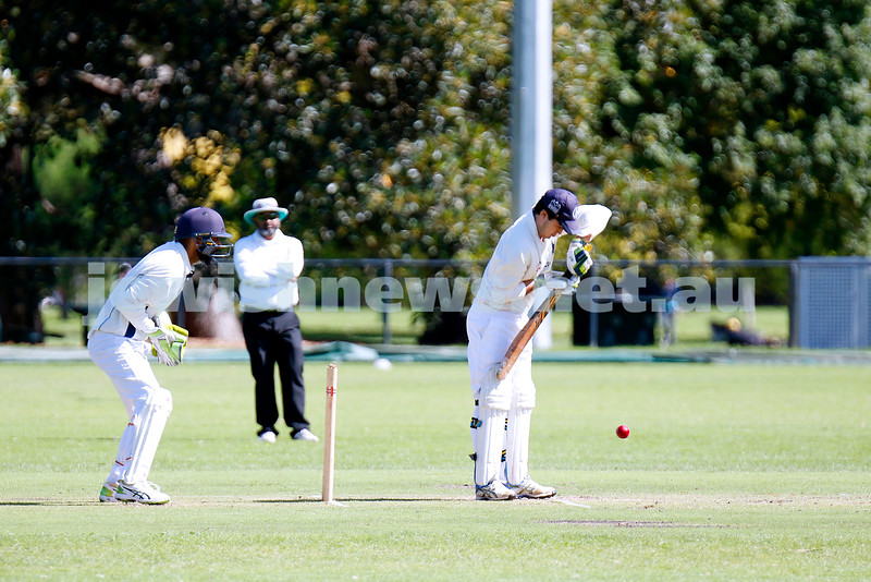 28-3-21. Maccabi AJAX First XI grand final. Defeated by Melbourne Cobras at Fawkner Park. Charlie Gross batting. Photo: Peter Haskin