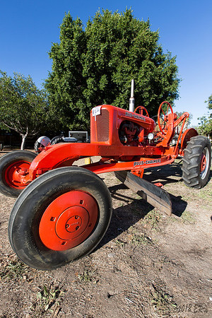A very nice Allis-Chalmers grader.  The orange was pretty bright in the morning sunlight.