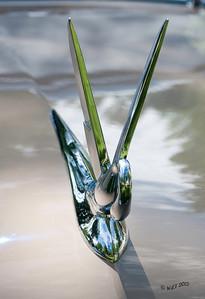 Swan Hood Orniment