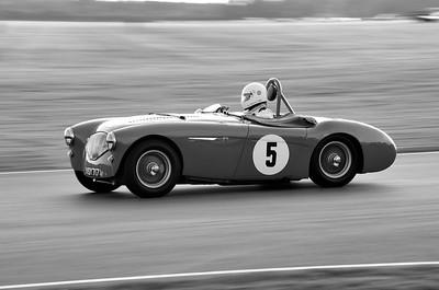 1955 Austin Healey 100-4 2670cc Tarek Mahmoud BW