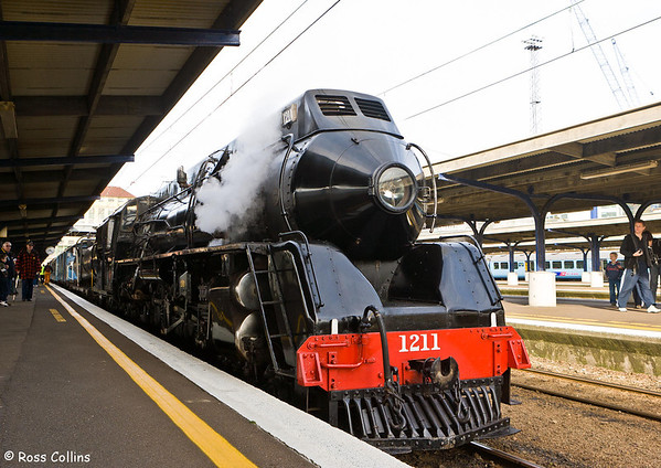 Daffodil Carnival Express, Steam Locomotive J1211, Wellington Station, 9 September 2007