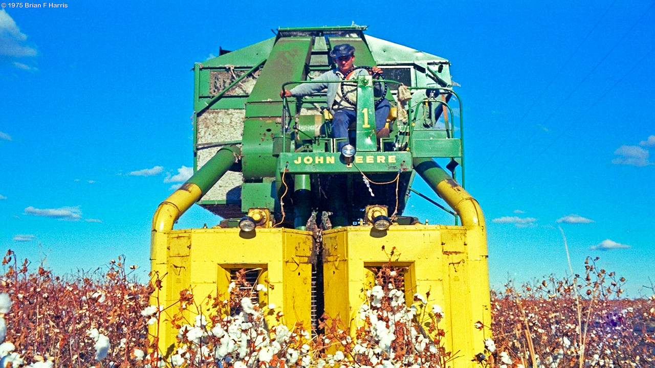 At the time this photo was taken on the Darling Downs in Queensland, Australia, this John Deere machine was one of the most modern and productive. The picker is really a factory on wheels, as the cotton and some stalk all pass into the machine at speed. We can observe the separated cotton in the left hand bin while the spinning beater will spread the waste stalks and husks behind the picker. The many clever steel picking fingers are kept slightly moist as they rotate and spin. On machines of today, the operator has an air conditioned cabin with filtered air to remove dust as happier operators are better producers. Music and UHF two way radio also assist on todays four row cotton pickers where cabin noise is much reduced.