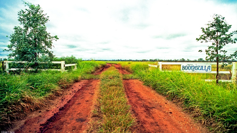 Yet another large farming operation on good soil close to Springsure