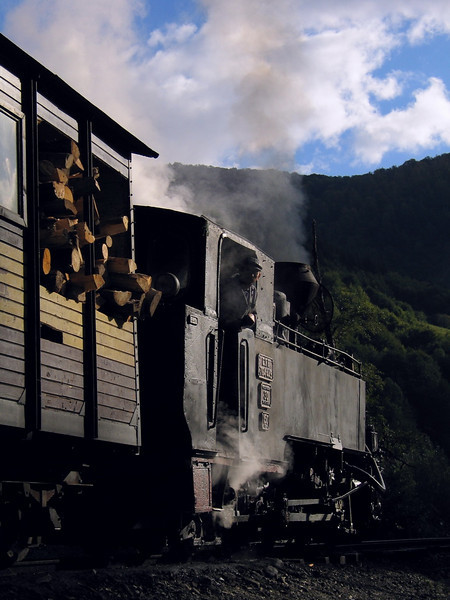 Going to the heart of forest. Valea Vaserului, 2004<br /> This is the last narrow gauge steam traction railway in Europe