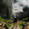 Shnting with a train of logs, before going down to Viseu. Ihoasa, Valea Novatzului, Maramures, Romania, 2004<br /> This is the last narrow gauge steam traction railway in Europe