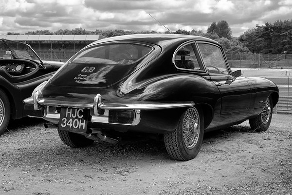 Jaguar E-type  - Silverstone Classic 2016