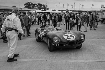 Jaguar D type to the Paddock