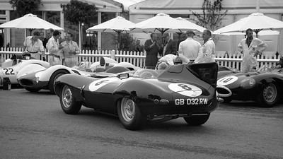 1955 Jaguar D-Type 3442cc Gary Pearson - Goodwood Revival Paddock 2013