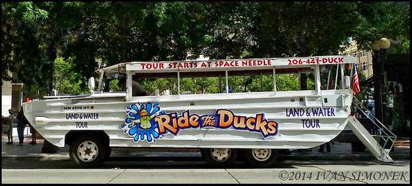 """SEATTLE DUCK 1"",Seattle,Wash.,USA."
