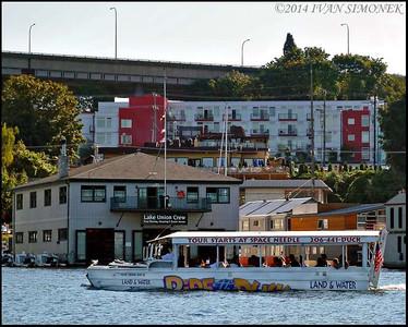 """""""SEATTLE DUCK 2"""",Lake Union,Seattle,Wash.,USA."""