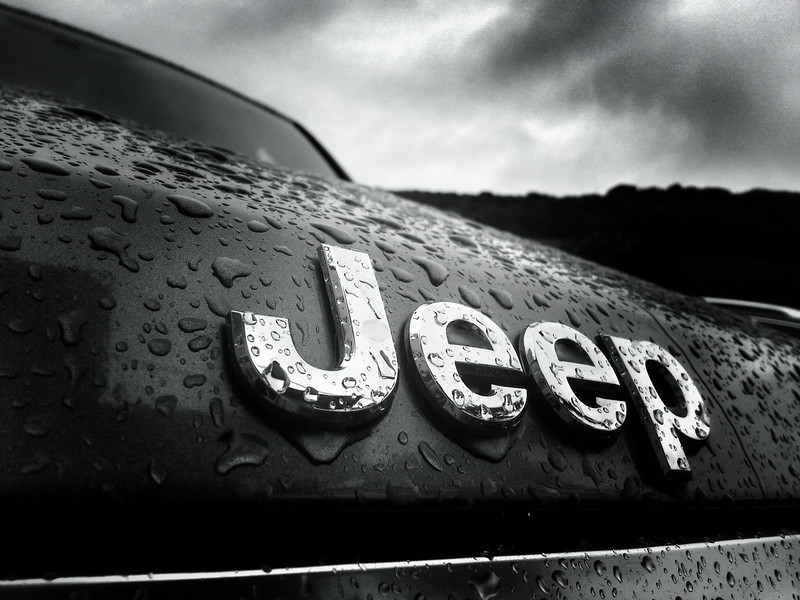 Jeepers it's Raining 256/365
