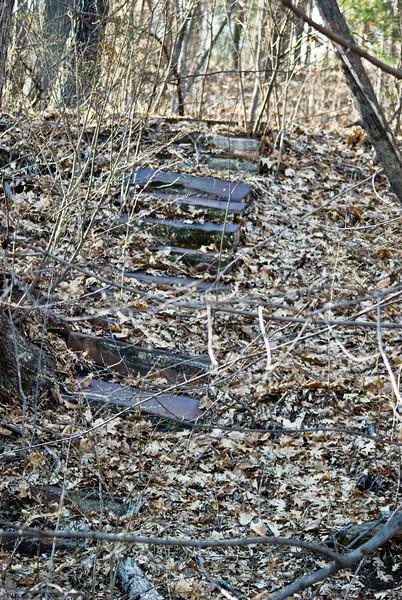 Old Park Steps
