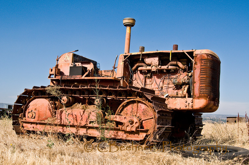 Old International Tractor - Chico