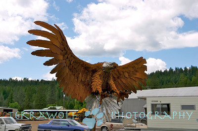 An eagle greets you in Libby, MT