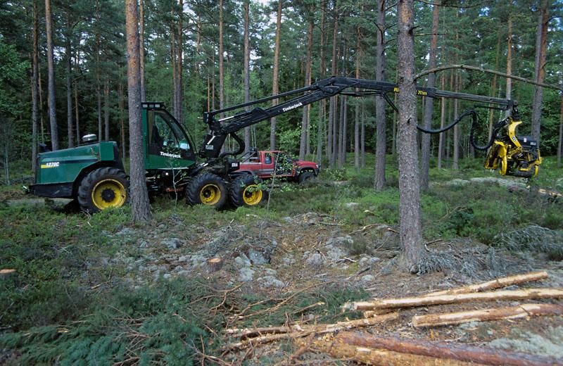 Timberjack 1270C
