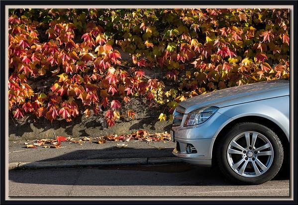Stadtbild im Herbst