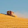 Harvest at Garver, Aug 11, 2011