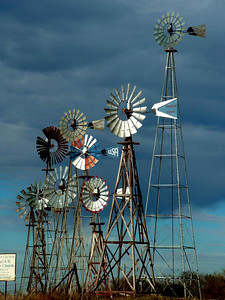 Cluster of windmills near Montague, Texas.