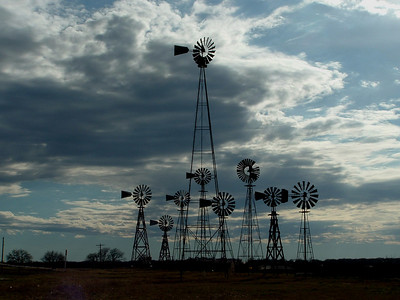 Collection near Montague, Texas.