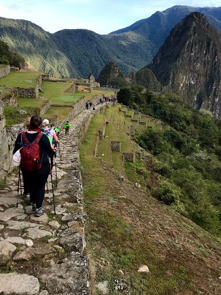 Entering the Machu Picchu complex. Goal achieved.