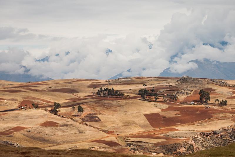 Potato and corn fields en route Machu Picchu near Cusco, Peru