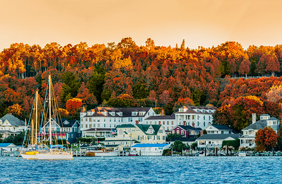Fall Colors from a previous season.  Early morning sunrise with light hitting the tops of trees and making  everything warm orange.  #Michigan #MackinacIsland #Mackinac #PureMichigan #MichiganAwesome #MliveNews  #puremichigan #mackinaw #upnorth #greatlakes #puremittenpride #islandhousemackinac