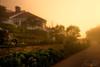 Sunrise on Mackinac Island - Mission Point Area