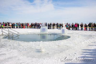 2015 Polar Bear Plunge