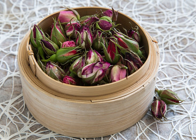Gathering fresh rose buds to dry for the Rosebud and Sweet Heart soaps