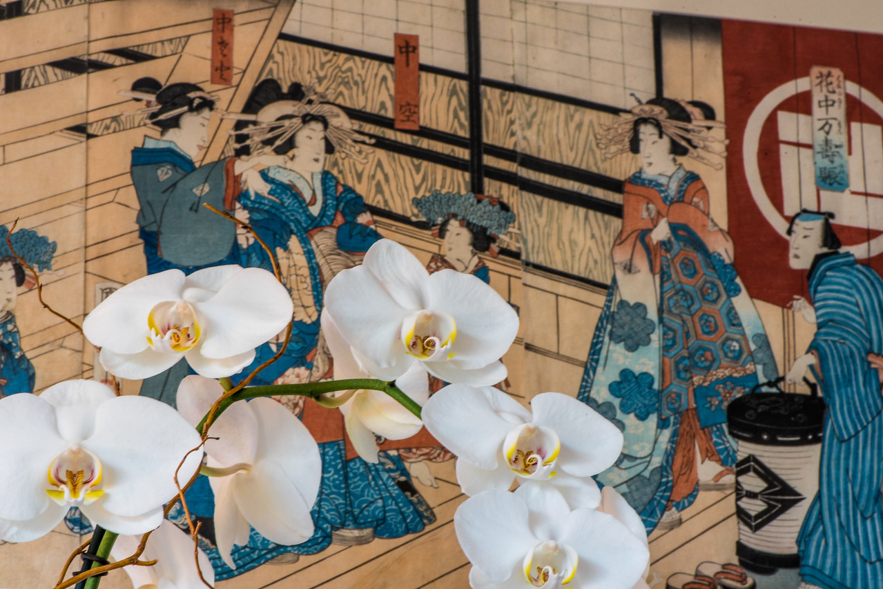 White Orchids with Japanese Print