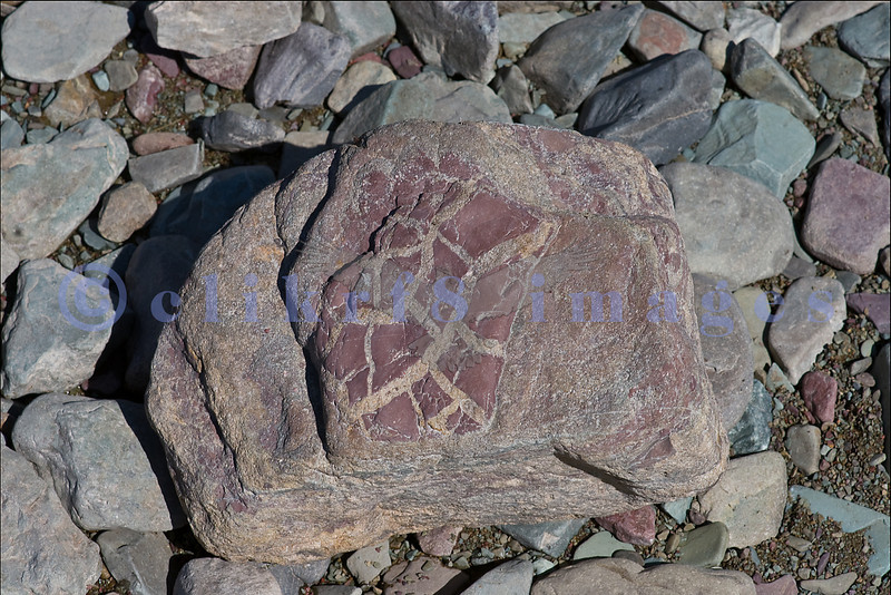 Found on the rocky beach at Glacier National Park, this rock reminded me of ancient petroglyphs.