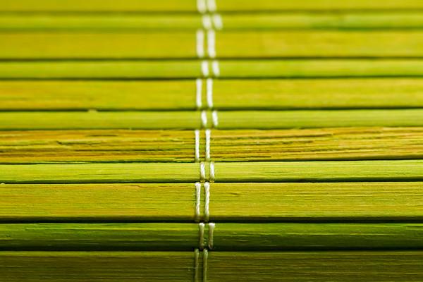 Green Bamboo Macro