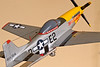 Profile of the P-51D Mustang model on the display stick 2