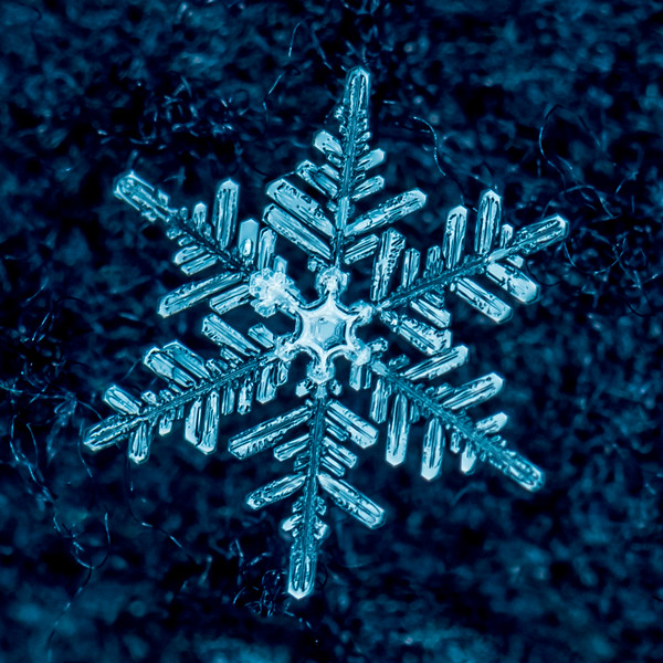 The Beauty of an Individual Snowflake 12/30/17