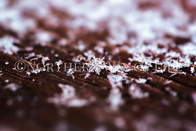 Snowflake: Leelanau County, Michigan