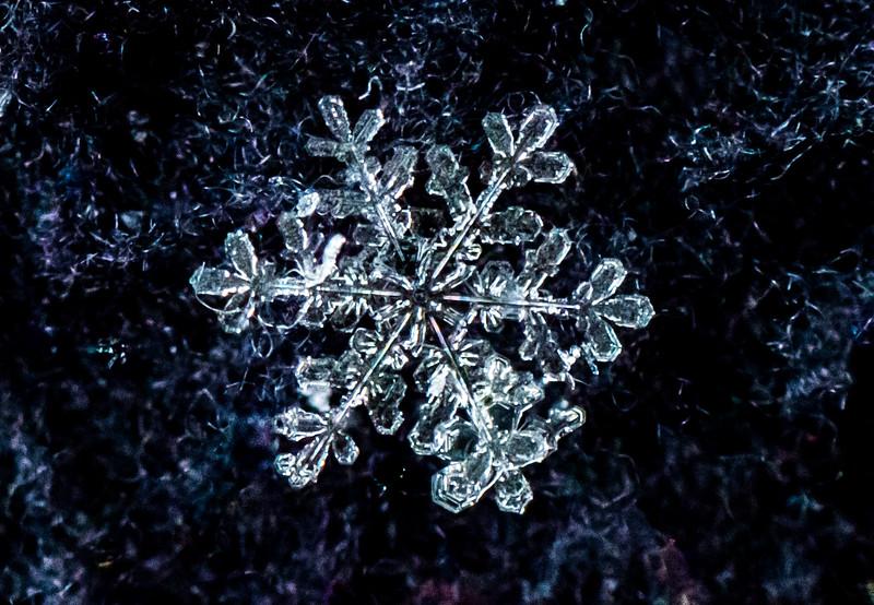 Snowflake 1/7/17