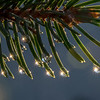 Sparkling Raindrops 4/6/17
