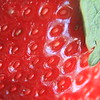 Berry good detail