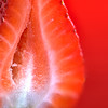 Strawberry Macro Red