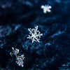 The Beauty of an Individual Snowflake