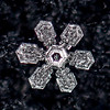 The Beauty of a Perfect Snowflake 12/15/17